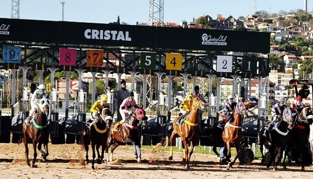 sporting betting breeders